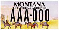 MT license plate #5