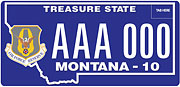 Air Force Reserve plate sample