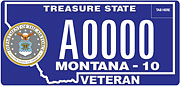 Air Force Veteran plate sample