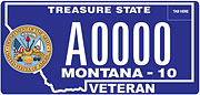 Army Veteran plate sample