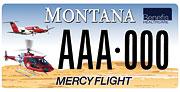 Benefis Mercy Flight plate sample
