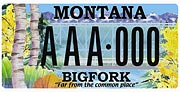 The Community Foundation for a Better Bigfork plate sample