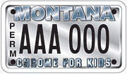 Chrome for Kids plate sample