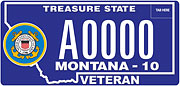 Coast Guard Veteran plate sample