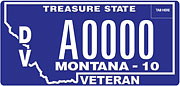 Disabled Veteran plate sample