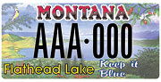 Flathead Lake Protection Association plate sample