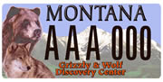Grizzly & Wolf Discovery Center plate sample