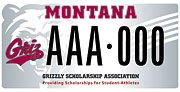 Grizzly Scholarship Association plate sample