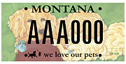 Humane Society of Western Montana plate sample