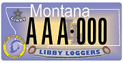 Libby Highschool plate sample