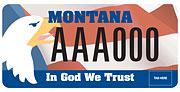 Montana Family Foundation plate sample
