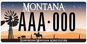 Montana Farm Bureau Foundation plate sample