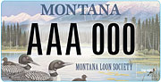 Montana Loon Society plate sample