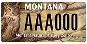 Montana Natural History Center plate sample