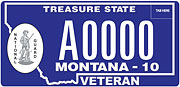 National Guard Retired plate sample