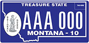 National Guard plate sample
