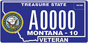 Navy Veteran plate sample