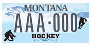 Richland Youth Hockey plate sample