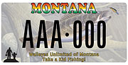 Walleyes Unlimited of Montana plate sample